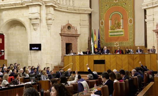 parlamento-cuadrada