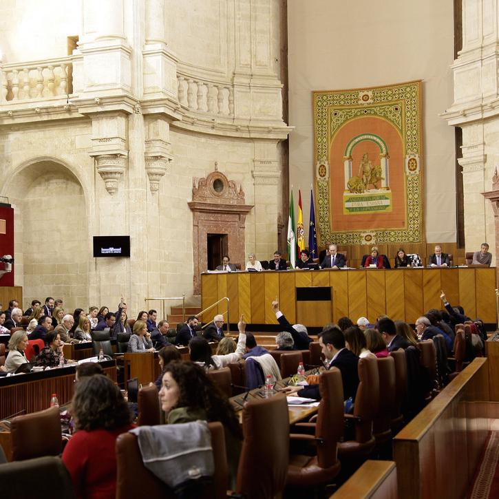 Andalucía ya tiene su propia comisión parlamentaria para velar por la protección de la infancia