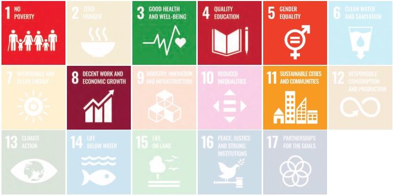 Los indicadores específicos de género y adolescentes se incluyen en los ODS 1, 3, 4, 5, 8 y 11 / Imagen del informe