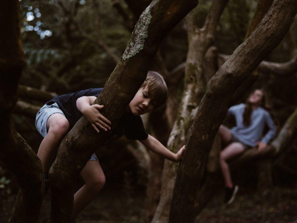 Niños jugando en un bosque / Annie Spratt para Unsplash